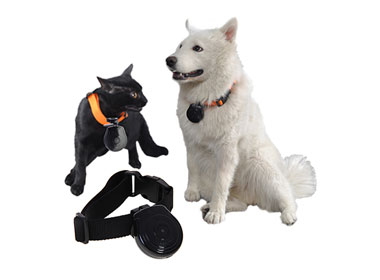 Mini Pet Trace Recorder w/ LCD