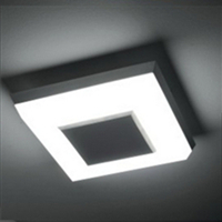 Hot Selling Indoor Modern Ceiling Lights